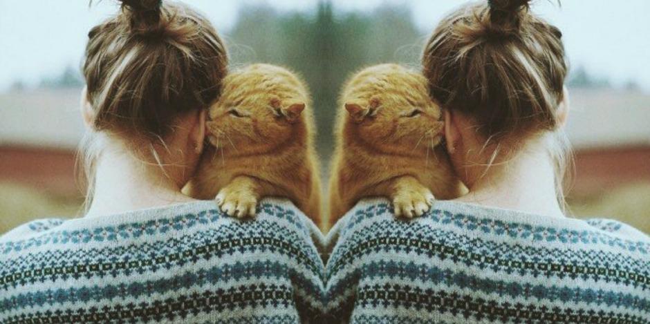 Kedi seven kadınlarla birlikte olmanın avantajları